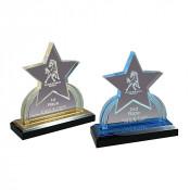 Acrylic GEO Star Impress Award