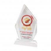 """7-3/4"""" x 4-3/4"""" Iceberg Crystal Award"""