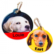 White Circle Pet Tag