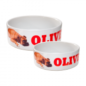 White Ceramic Pet Bowl
